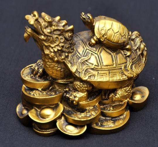 Home - Turtle Dragon Acupuncture & Herbs in San Antonio, TX